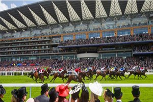 The Veranda Royal Ascot
